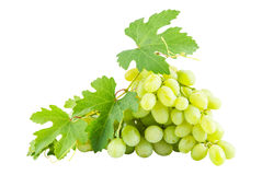 Ripe green grapes Royalty Free Stock Photo