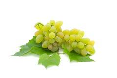 Ripe green grapes on a white background. Grape bunch with leaves on a white background Royalty Free Stock Photo
