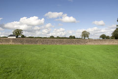 Ripe green grass flield with stone wall Royalty Free Stock Image