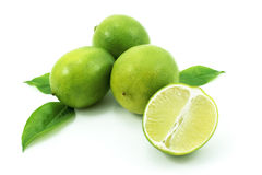 Ripe green lime. With young green leaves isolated on white background stock images