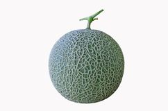 Ripe green melon with beautiful skin Stock Photo