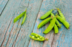 Ripe green peas in pod on shabby background Stock Photography