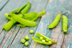 Ripe green peas in pod on shabby background Royalty Free Stock Photography