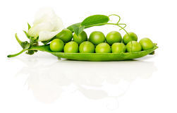 Ripe green peas on the white background Stock Photography