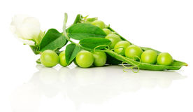 Ripe green peas on the white background Stock Images