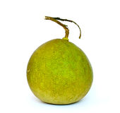 Ripe Green pomelo citrus fruit isolated on white background. Green pomelo citrus fruit isolated on white background Royalty Free Stock Images