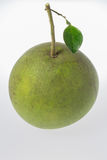 Ripe Green pomelo citrus fruits Royalty Free Stock Images