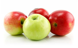 Ripe Green and Red Apples Isolated on White Stock Photos
