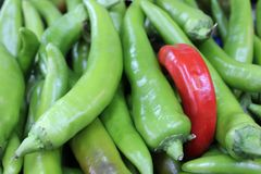 Ripe green and red hot peppers. Stock Photography