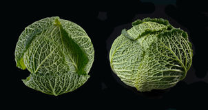Ripe green savoy cabbage. Royalty Free Stock Photography