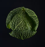 Ripe green savoy cabbage. Stock Photography