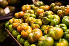 Ripe green tomatoes at the market Royalty Free Stock Images