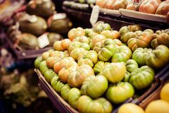 Ripe green tomatoes at the market Stock Images