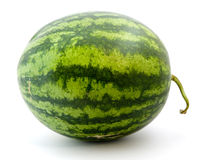 Ripe green watermelon Stock Photo