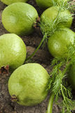 Ripe guavas Royalty Free Stock Photos