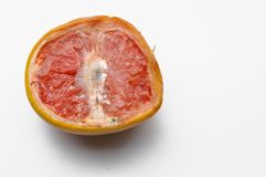 Ripe half of pink grapefruit citrus fruit isolated on white background. Slice raw object food healthy juicy freshness red vibrant sour vegetarian organic royalty free stock photos