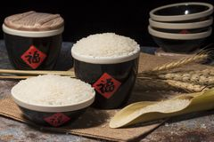 Ripe and harvested rice. Take a closer look at the rice stock photography