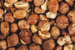 Ripe hazelnuts as background, macro shot Royalty Free Stock Image