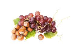 Ripe hazelnuts and  grape on a white. Royalty Free Stock Images