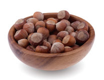 Ripe hazelnuts in shell. Stock Image
