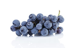 Ripe isabella grapes isolated Stock Image