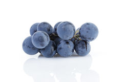 Ripe isabella grapes isolated Stock Images