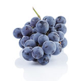 Ripe isabella grapes  Royalty Free Stock Photos