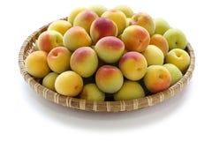 Ripe japanese apricot fruits stock photos