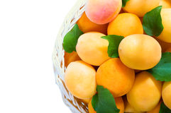 Ripe juicy apricots. Juicy ripe apricots in a basket on a white background Royalty Free Stock Photos