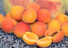 Ripe juicy apricots and peaches, summer harvest stock photos
