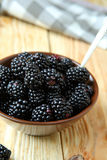 Ripe and juicy blackberries in a bowl Royalty Free Stock Image