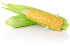 Ripe juicy corn Royalty Free Stock Images