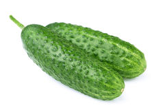 Ripe juicy cucumber Royalty Free Stock Images