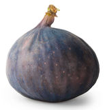 Ripe juicy figs Stock Images