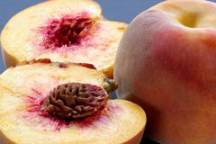 Ripe juicy fleshy peaches. Ripe juicy fleshy cut peaches royalty free stock photography