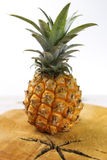 Ripe juicy fresh baby pineapple on wood Stock Photos