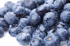 Ripe and juicy fresh picked blueberries Royalty Free Stock Image