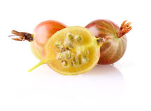 Ripe juicy gooseberry Stock Photo