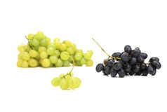 Ripe juicy grapes. Royalty Free Stock Photos