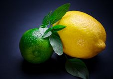 Ripe and juicy lime and lemon with a sprig of mint on a dark tab stock image