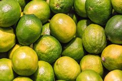 Ripe and juicy lime texture. Ripe and juicy lime as a texture royalty free stock photo