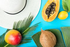 Ripe juicy mango halved papaya coconut on big palm leaf. Straw beach sun hat on blue background. Summer vacation fashion stock photo