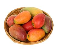 Ripe juicy mangoes in a round bamboo tray Stock Photos