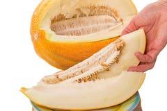 Ripe juicy melon Stock Images