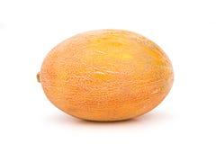Ripe juicy melon uncut Royalty Free Stock Photos