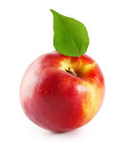 Ripe juicy nectarine with green leaf Stock Image