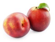 Ripe juicy nectarine Stock Images