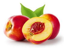 Ripe juicy nectarine with leaves Royalty Free Stock Image