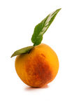 Ripe juicy peaches Royalty Free Stock Photos