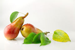 Ripe juicy pear with water drops. Ripe juicy pear with drops of water on a white background Royalty Free Stock Image